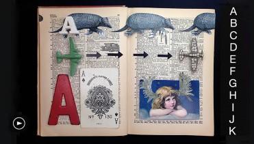 Curious Alphabet 1 Julie Shaw Lutts
