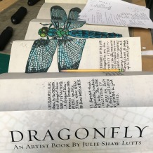 Julie Shaw Lutts Rough Dragonfly