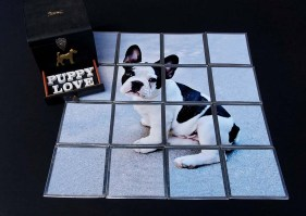 Includes Life Size French Bull Dog Puppy